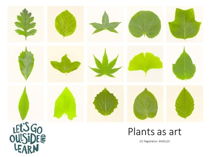 Poster for plants as art